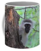 Chacma Baboon Coffee Mug