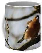 Chaffinch 3 Coffee Mug