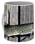 Chain Pike Coffee Mug