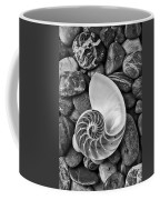 Chambered Nautilus Shell  On River Stones Coffee Mug