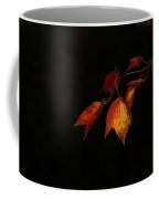 Changing Color Fall Maple Leaves On Black Coffee Mug