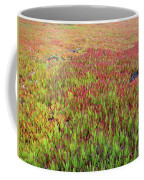 Changing Landscape II Coffee Mug