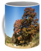Changing Maple Colors Coffee Mug