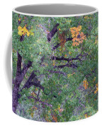 Changing Of The Seasons Coffee Mug by Mary Deal