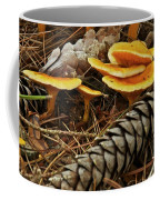 Chanterell Mushrooms  Coffee Mug