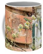 Charleston Climbing Rose Coffee Mug