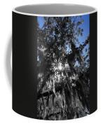 Charleston Library Green Coffee Mug