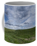 Charlotte Vermont Hay Field Farm Grass Coffee Mug