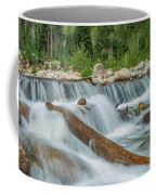 Chasm Falls Coffee Mug