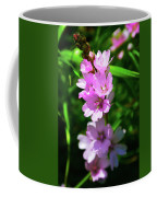 Checkerbloom Coffee Mug