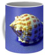 Checkered Helmet Seashell Coffee Mug