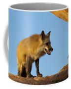 Checking My Shadow Coffee Mug