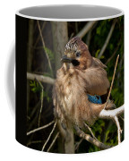 Cheeky Jay Coffee Mug