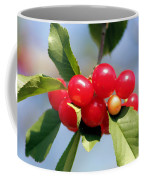 Cheery Cherries Coffee Mug