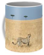 Cheetah Acinonyx Jubatus In Plains Coffee Mug
