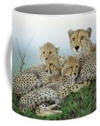 Cheetah And Her Cubs Coffee Mug