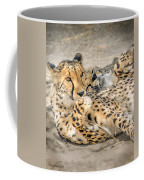 Cheetah Lounge Cats Coffee Mug