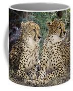 Cheetah Pair Coffee Mug