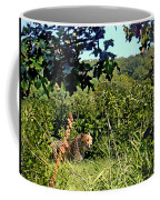 Cheetah Zoo Landscape Coffee Mug