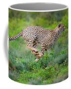 Cheetahs Acinonyx Jubatus Hunting Coffee Mug