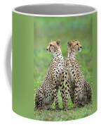 Cheetahs Acinonyx Jubatus In Forest Coffee Mug