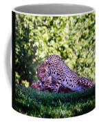 Cheetahs In Love Coffee Mug