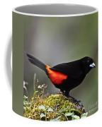 Cherrie's Tanager Coffee Mug by Heiko Koehrer-Wagner