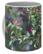 Cherry Blossom Blooms Coffee Mug