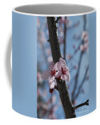 Cherry Blossom Branch Coffee Mug