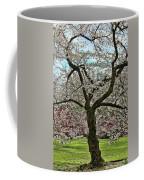 Cherry Blossom Trees Of Branch Brook Park 31 Coffee Mug