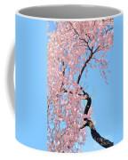 Cherry Blossom Trilogy IIi Coffee Mug