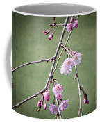 Cherry Blossoms In Early Spring Coffee Mug