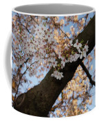 Cherry Blossoms Coffee Mug by Megan Cohen