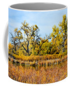 Cherry Creek Pond In Autumn Coffee Mug