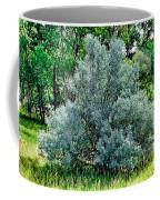 Cherry Creek Trail Study 2 Coffee Mug
