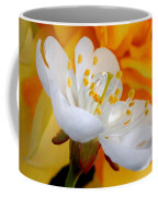 Cherry Flower In The Spring, In Profile Coffee Mug