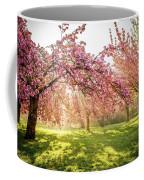 Cherry Flowers Garden Illuminated With Sunrise Beams Coffee Mug