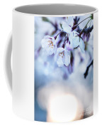 Cherry Tree Blossoms In Morning Sunlight Coffee Mug