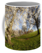 Cherry Trees In Bloom In Nashville Coffee Mug