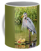 Chest Feathers Coffee Mug
