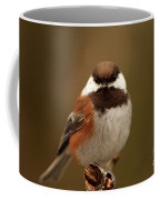 Chestnut-backed Chickadee  Coffee Mug
