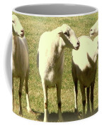 Cheviot Sheep Coffee Mug