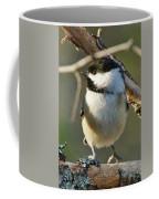 Chickadee Enjoying The Sun Coffee Mug