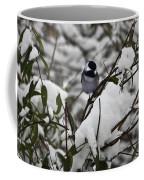 Chickadee On The Jasmine Coffee Mug