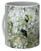 Chickasaw Plum Blooms Coffee Mug