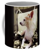Chihuahua Chiqui Portrait 3 Coffee Mug