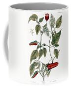 Chili Pepper, 1735 Coffee Mug