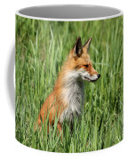 Chillin Vixen  Coffee Mug