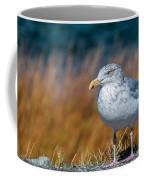 Chilling Seagull Coffee Mug