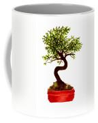 Chinese Elm Bonsai Tree Coffee Mug
